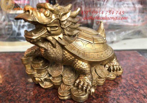 Rùa Đầu Rồng (Long Quy)
