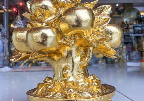 Cây Hồng Phúc Lộc